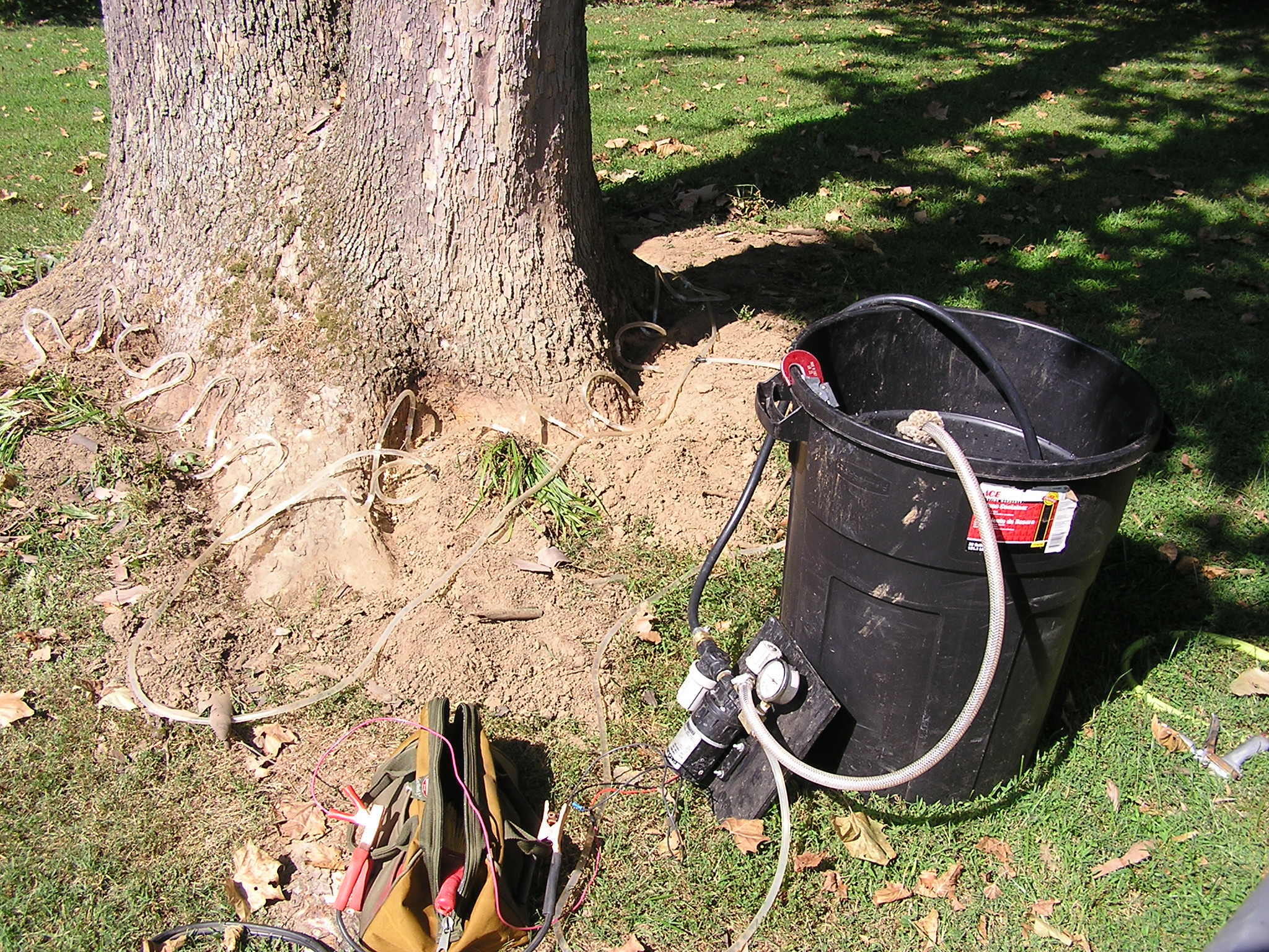 Micro-injection tools near a tree