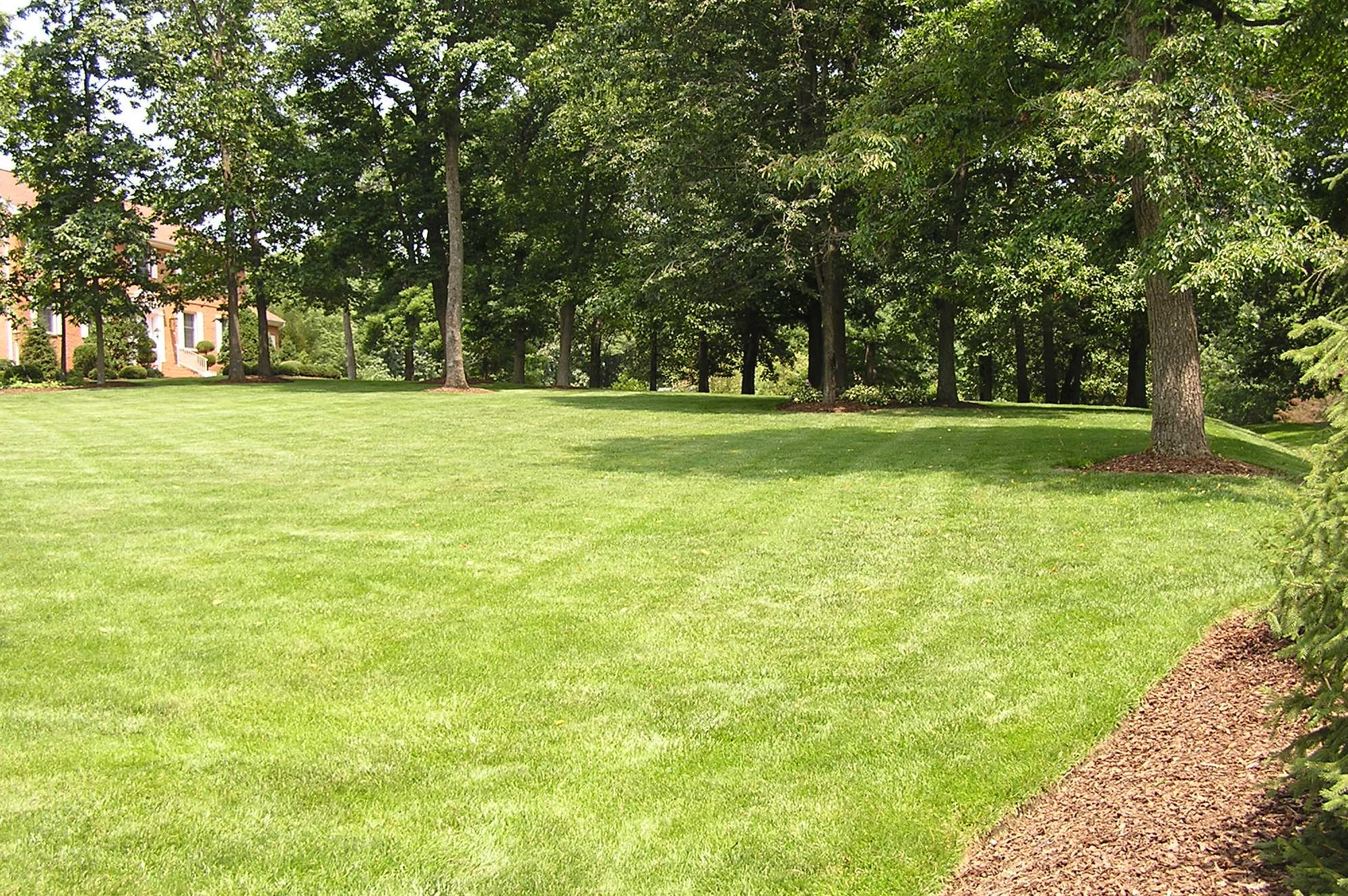 2018 Lawn Treatment Program